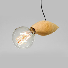 Wooden Fish Glass Pendant lighting